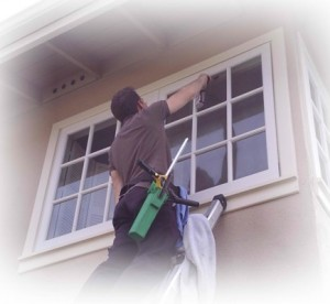 Window Cleaning Services Available